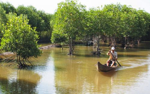 Can Gio Mangrove Forest 1 Day Escape